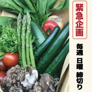 近江野菜詰め合わせ
